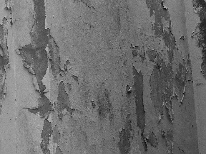 Actually used the zoom for this shot. Loved the texture of the peeling paint. We've each different notions of beauty and beauty inspires. I create better work when surrounded by beautiful things, that's a fact. I suppose this is why architects concern themselves with creating spaces that elevate the mind, and why craftspeople enthuse over the appearance of their gear...